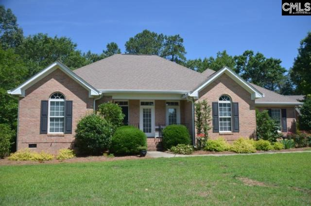 205 Vista Springs Circle, Lexington, SC 29072 (MLS #444492) :: EXIT Real Estate Consultants