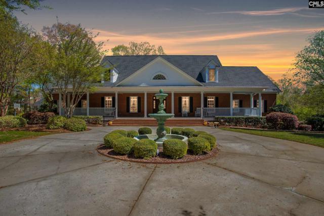 1244 Steeple Ridge Road, Irmo, SC 29063 (MLS #444688) :: Home Advantage Realty, LLC