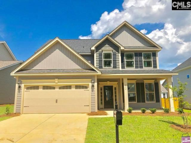 712 Council Lane #120, Lexington, SC 29072 (MLS #444950) :: The Olivia Cooley Group at Keller Williams Realty