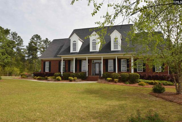 226 Southland Road, Gilbert, SC 29054 (MLS #445259) :: EXIT Real Estate Consultants