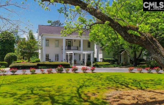 221 Corley Mill Road, Lexington, SC 29072 (MLS #446042) :: Home Advantage Realty, LLC