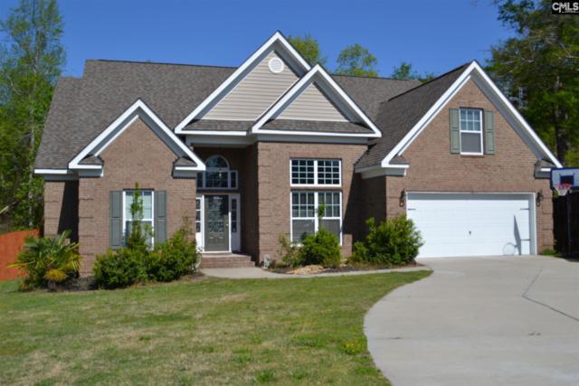 426 Pisgah Flats Court, Lexington, SC 29072 (MLS #446074) :: EXIT Real Estate Consultants