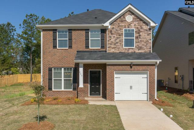 113 Bickley Manor Court #3, Chapin, SC 29036 (MLS #446248) :: Home Advantage Realty, LLC