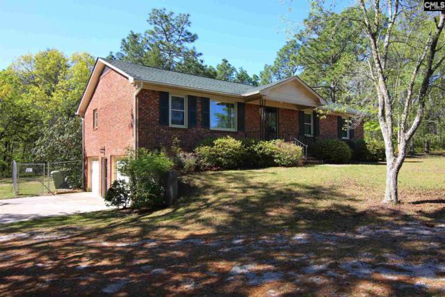 545 Pleasant View Dr, Lexington, SC 29073 (MLS #446324) :: Home Advantage Realty, LLC