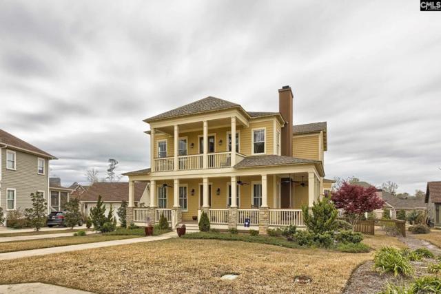 933 Battenkill Court, Lexington, SC 29072 (MLS #446543) :: EXIT Real Estate Consultants