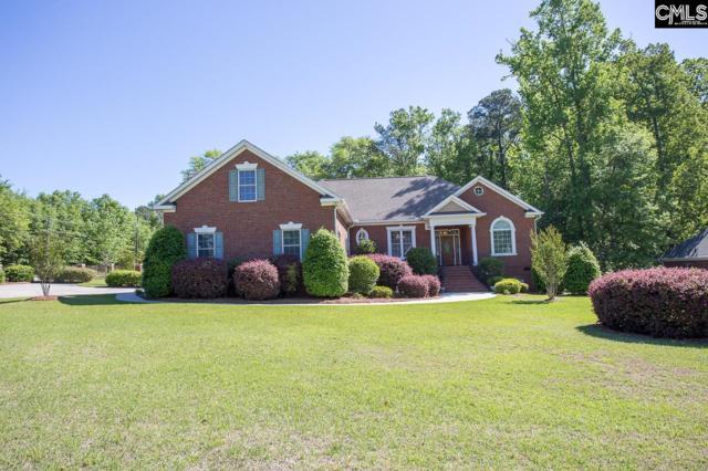 101 Autumn Oaks Lane, Lexington, SC 29073 (MLS #446578) :: EXIT Real Estate Consultants