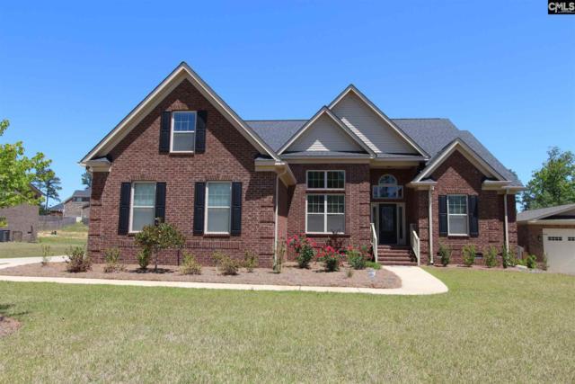123 Renard Way, Gilbert, SC 29054 (MLS #447685) :: Home Advantage Realty, LLC