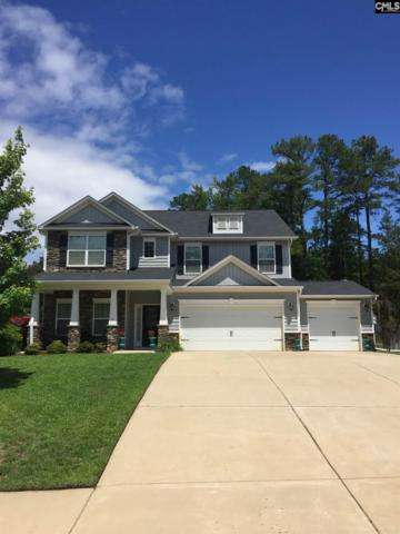 234 Woolbright Lane, Chapin, SC 29036 (MLS #447979) :: The Olivia Cooley Group at Keller Williams Realty