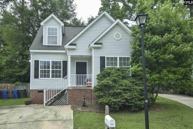 233 Village Walk, Columbia, SC 29209 (MLS #448343) :: The Olivia Cooley Group at Keller Williams Realty