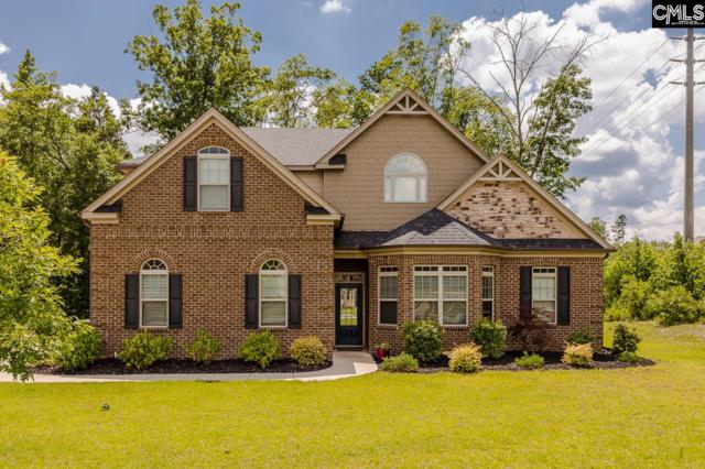 352 Summers Trace Drive, Blythewood, SC 29016 (MLS #449589) :: RE/MAX AT THE LAKE