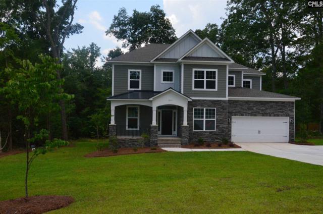 139 Limestone Road, Chapin, SC 29036 (MLS #449888) :: Home Advantage Realty, LLC