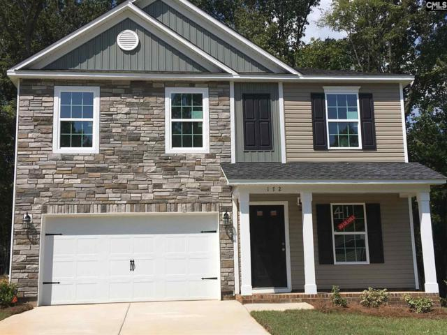 172 Sunsation Drive, Chapin, SC 29036 (MLS #449935) :: Home Advantage Realty, LLC