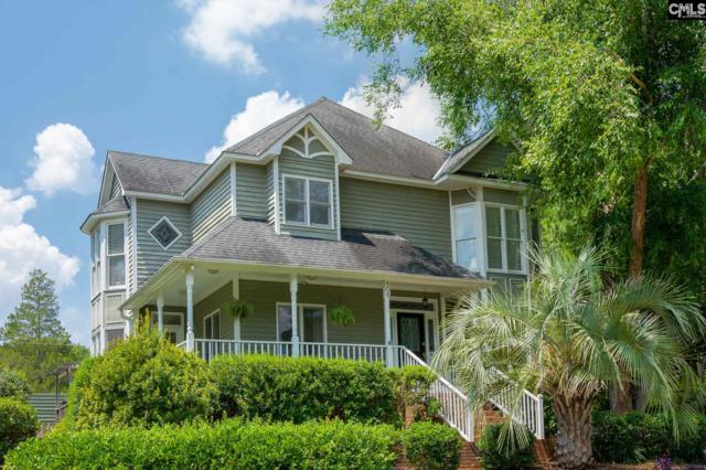 106 Branch Hill Lane, Columbia, SC 29223 (MLS #449989) :: EXIT Real Estate Consultants