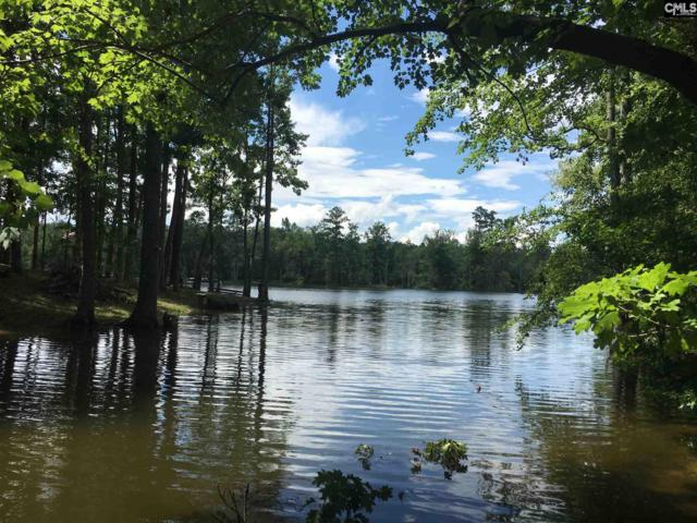 131 Crystal Cove Road, Leesville, SC 29070 (MLS #450473) :: EXIT Real Estate Consultants
