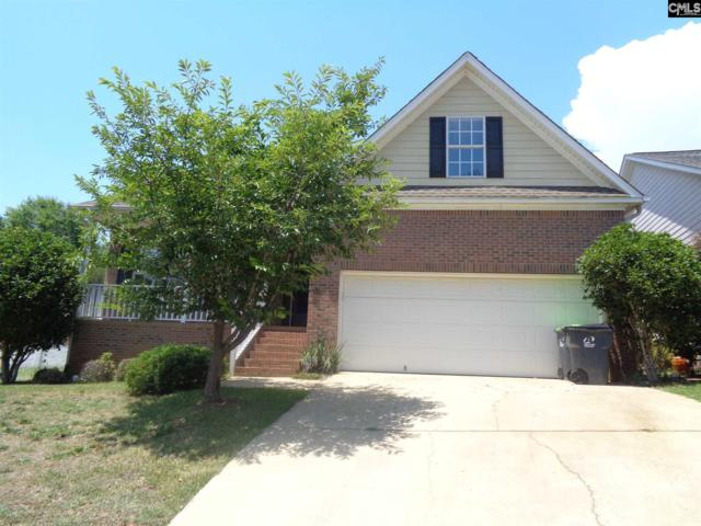 215 Fairway Ridge Drive, Chapin, SC 29036 (MLS #450645) :: EXIT Real Estate Consultants