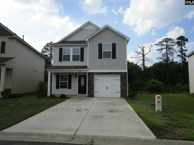 669 Dawsons Park Way, Lexington, SC 29072 (MLS #450727) :: The Olivia Cooley Group at Keller Williams Realty