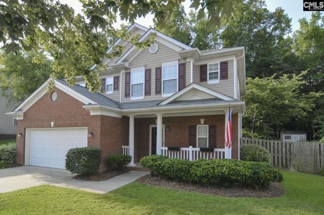 264 Winterberry Loop, Lexington, SC 29072 (MLS #450863) :: Home Advantage Realty, LLC