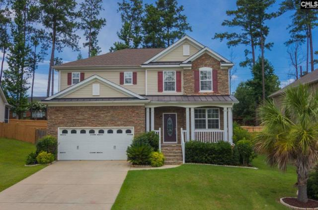 412 Plymouth Pass Dr, Lexington, SC 29072 (MLS #451215) :: The Olivia Cooley Group at Keller Williams Realty