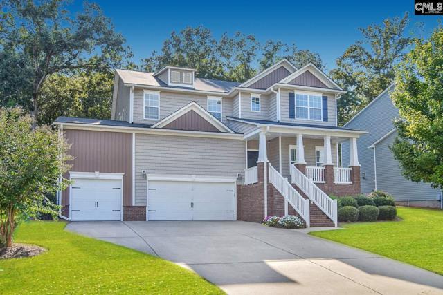 235 Stonemont Drive, Irmo, SC 29063 (MLS #451323) :: Home Advantage Realty, LLC