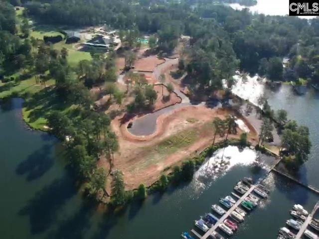 329 Ellwood Lane Lot 20, Chapin, SC 29036 (MLS #451367) :: EXIT Real Estate Consultants