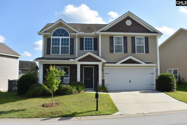 239 Starling Way, Lexington, SC 29073 (MLS #451419) :: EXIT Real Estate Consultants