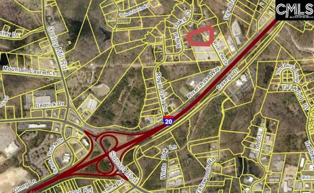 200 Rich Lex Drive, Lexington, SC 29072 (MLS #451690) :: EXIT Real Estate Consultants