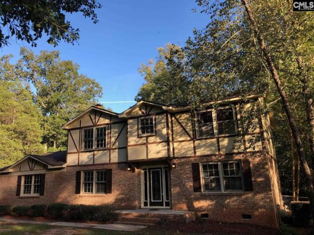 601 White Falls Drive, Columbia, SC 29212 (MLS #452027) :: The Olivia Cooley Group at Keller Williams Realty