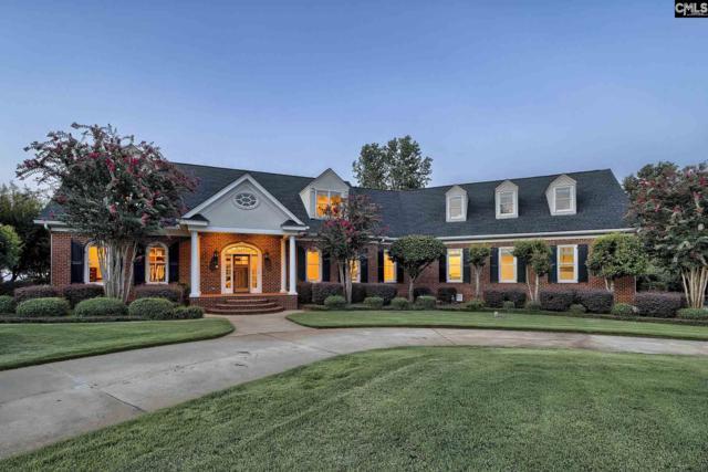 128 Morning Shore Court, Lexington, SC 29072 (MLS #452048) :: Home Advantage Realty, LLC