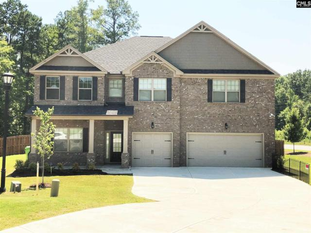 1000 Grey Duck Lane, Blythewood, SC 29016 (MLS #452058) :: EXIT Real Estate Consultants