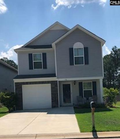 126 Sageland Place, Columbia, SC 29223 (MLS #452080) :: RE/MAX AT THE LAKE