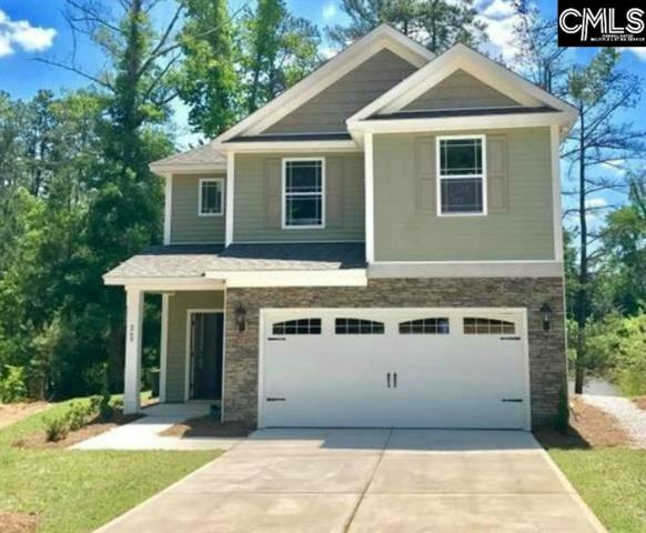260 Cherokee Pond Court, Lexington, SC 29072 (MLS #452844) :: RE/MAX AT THE LAKE