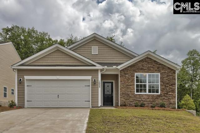 718 Autumn Shiloh Drive, Chapin, SC 29036 (MLS #453378) :: Home Advantage Realty, LLC