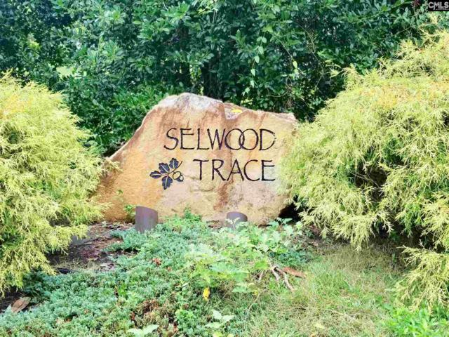 127 Old Selwood Trace Lot 3, Columbia, SC 29212 (MLS #453450) :: EXIT Real Estate Consultants