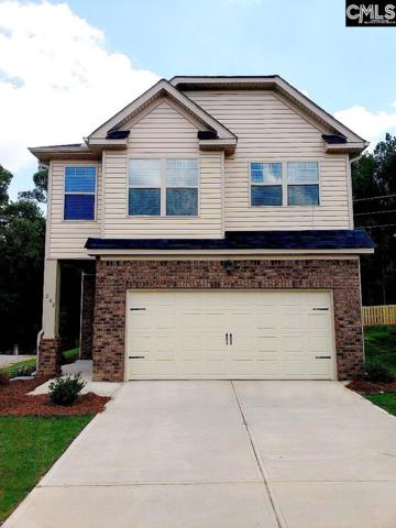 248 Bickley View Court #43, Chapin, SC 29036 (MLS #453547) :: RE/MAX AT THE LAKE