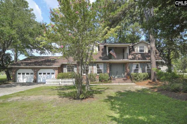 117 Windsor Point Road, Columbia, SC 29223 (MLS #453727) :: Home Advantage Realty, LLC