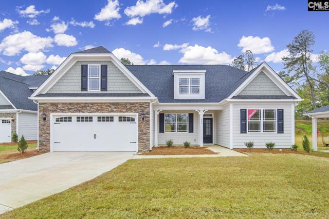 208 Laurelbrook Drive, Chapin, SC 29036 (MLS #453854) :: The Olivia Cooley Group at Keller Williams Realty