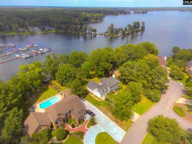 629 Harborview Point, Chapin, SC 29036 (MLS #453991) :: Home Advantage Realty, LLC