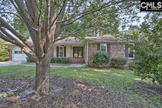 119 Hayburg Drive, Irmo, SC 29063 (MLS #454569) :: EXIT Real Estate Consultants