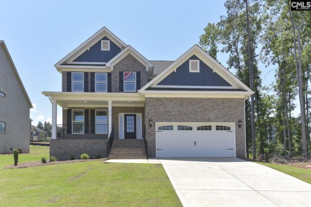 411 Tristania Lane, Columbia, SC 29212 (MLS #454570) :: EXIT Real Estate Consultants