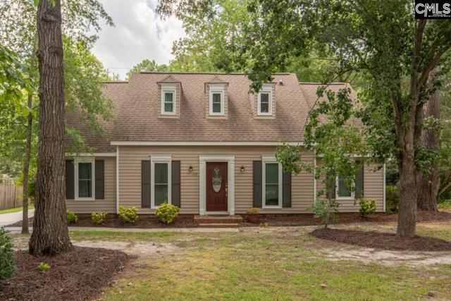 419 Great North Road, Columbia, SC 29223 (MLS #454581) :: EXIT Real Estate Consultants