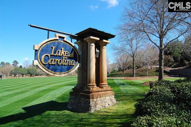 145 Carolina Ridge Drive, Columbia, SC 29229 (MLS #454608) :: Home Advantage Realty, LLC
