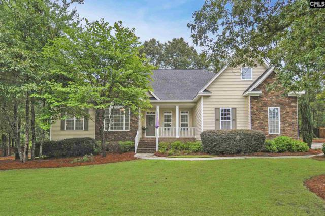 16 Brandywine Ct, Elgin, SC 29045 (MLS #454675) :: Home Advantage Realty, LLC