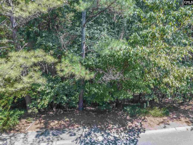 509 Mallard Lakes Drive, Lexington, SC 29072 (MLS #454689) :: EXIT Real Estate Consultants