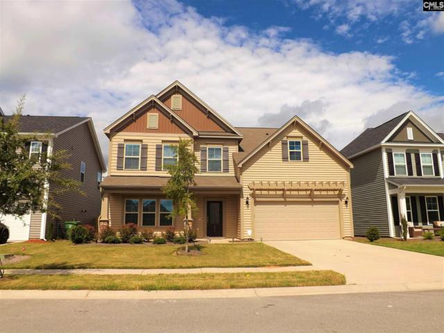 211 Sallie Gordon Lane, Elgin, SC 29045 (MLS #454694) :: EXIT Real Estate Consultants