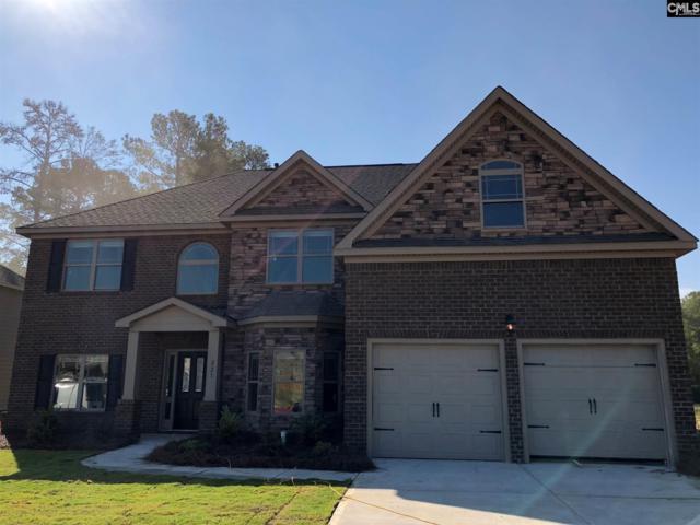 238 Lever Pass Road #30, Chapin, SC 29036 (MLS #454783) :: Home Advantage Realty, LLC