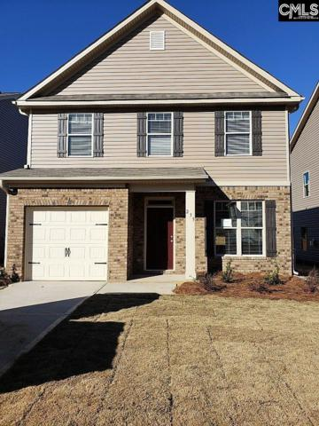235 Bickley View Court, Chapin, SC 29036 (MLS #454876) :: The Olivia Cooley Group at Keller Williams Realty