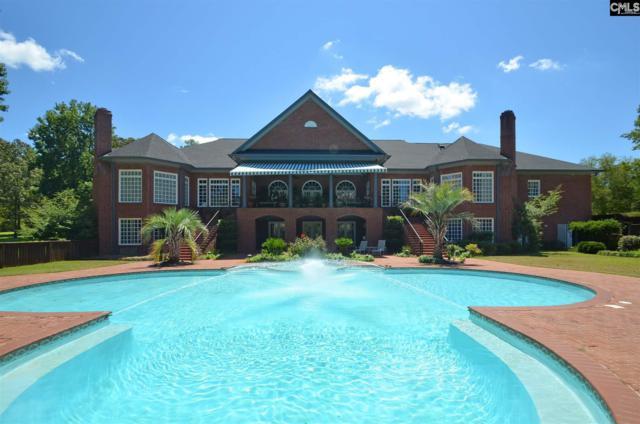157 Crown Lake Drive, Hopkins, SC 29061 (MLS #454928) :: Home Advantage Realty, LLC