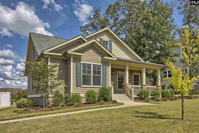 910 Battenkill Court, Lexington, SC 29072 (MLS #454940) :: Home Advantage Realty, LLC