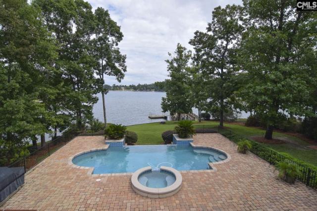 467 Greenetree Lane, Lexington, SC 29072 (MLS #456685) :: EXIT Real Estate Consultants