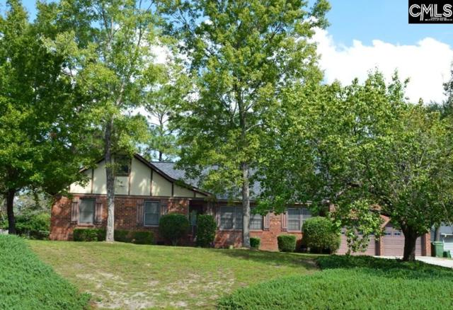 212 Olde Springs Road, Columbia, SC 29223 (MLS #457220) :: Home Advantage Realty, LLC